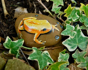 Painted Yellow Frog Stone / Rock Art / Hand-Painted / Natural Stone Painting / Frog Art