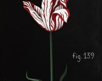"""Dutch Tulip Botanical acrylic painting - 16"""" x 20"""""""