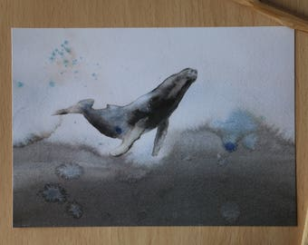 Whale watercolor print