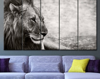 Black and white, a lion, Big cat lion, Muzzle lion art, The lion is resting, Lion canvas, A picture of a lion, Lion painting, Lion art