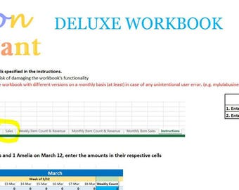 Fashion Consultant DELUXE Finance Accounting Excel Spreadsheet Workbook - Profit, Revenue, Inventory Sales, Expenses, Taxes, and More!