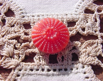 Coral Sea Urchin Vintage Moonglow Czech Glass Button
