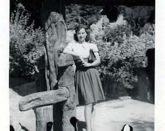 vintage photo 1944 Chinese Tea Garden San Antonio Texas Cute Lady Snapshot