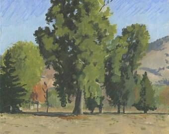 Tree at Scienceworks: Original Oil Painting Plein Air Landscape