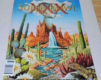1996 Super Bowl XXX The Official Game Program