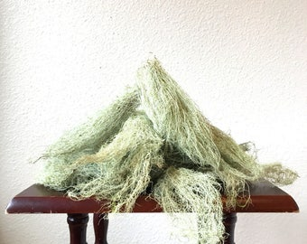 Old Man's Beard Lichen .5 oz / Moss .5 oz / Usnea / Green