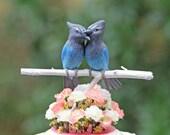 RESERVED for TRICIA - Steller's Jay Love Birds handmade wedding cake topper