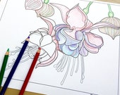 flower coloring page, adult coloring sheet, printable coloring pages, fuchsia flower art