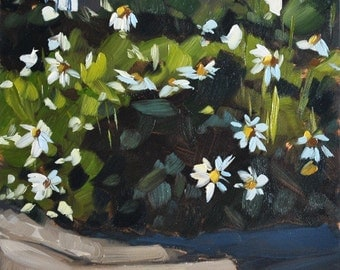 Still life painting- Daisies - 6x6 - floral oil painting by Sharon Schock