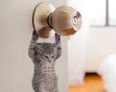 Cute hanging baby cat kitten door decal sticker #6067