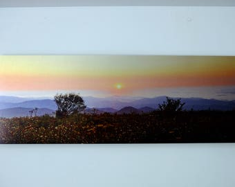 Appalachian Sunrise, Metal Panoramic Print with Floating Frame, Graveyard Fields, NC