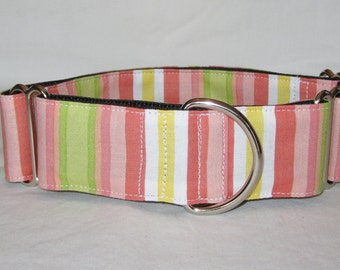 SALE Pastel Stripe Martingale Dog Collar - 1.5 or 2 Inch - pink lime green yellow summer spring white colorful