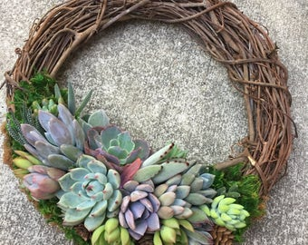 """12"""" Living Succulent Wreath (made to order)"""