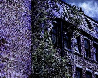 Horror Print - Woodland, Run Down Building, A3,Horror Scene,Dark Print,Digital Art,Horror Art,Dark Art, House, Building, Blue Scene