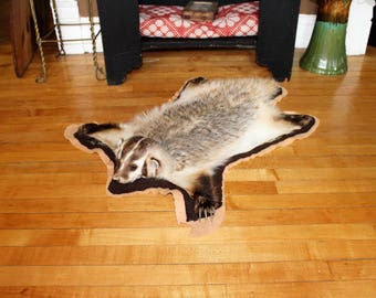 Taxidermy Badger Rustic Farmhouse Cabin Decor