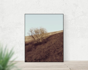 BACK OF BEYOND | Landscape photography | minimalist nature art print | blue and brown rustic home decor | modern country decor | wall art