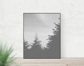 GHOSTS | Surreal nature art print | grey rustic home decor | foggy woodland photo print | woodland trees wall art | modern nature print