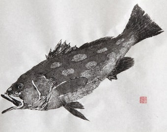 CALICO Kelp BASS Original Gyotaku - traditional Japanese fish art (2)