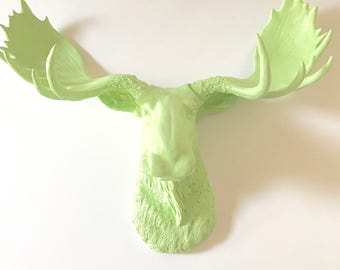 Faux Taxidermy Moose Head wall mount in PASTEL PISTACHIO animal wall hanging faux taxidermie wildlife kids wall decor office wall decor /