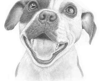 All Sizes~Dog Pencil Portraits & Gift Cards ~ All Sizes ~ Hand-Drawn with Framing Options