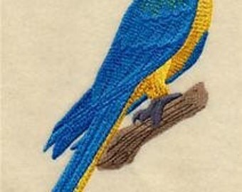 Blue & Yellow Macaw On Branch Embroidered Towel   Flour Sack Towel     Dish Towel   Kitchen Towel   Hand Towel   Parrot Decor