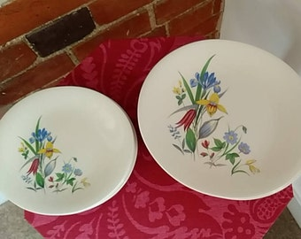 Very pretty set of 12 oval tea plates with Spring flower design - Grindley Pottery England
