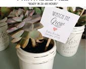 PRINTABLE 24-48 hour turnaround - Watch Me Grow tags - ready in 24-48 hours