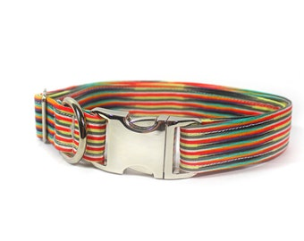 "Rainbow stripped psychedelic dog collar - ""Make a Stand"""