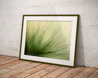 Office Room Decor For Women, Nature Photography Print, Abstract Office Wall Art, Greenery Wall Art, Pine Needles Fine Art Print