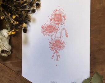 Poppy Botanical Print | Letterpress Print | Botanical Illustration | Scientific Drawing