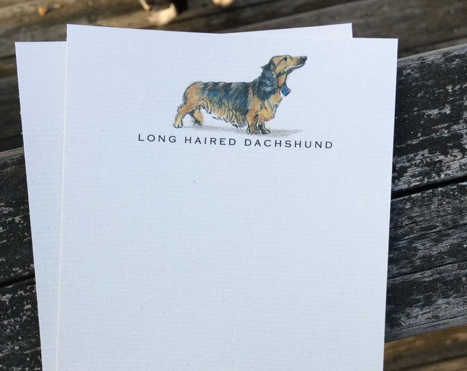 Long Haired Dachshund Dog Note Card Set