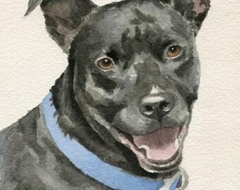 Pet Portrait Custom, Watercolor Portrait, Pitbull, Dog Art