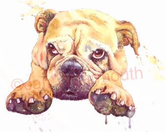 Custom pet portrait custom dog portrait in Watercolour, pen and ink from your photographs. Original art painting. Made to order. UK seller