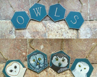 Interior decoration, wall decoration 'Owls' / OWL scares, Lapland owl, tengmal,