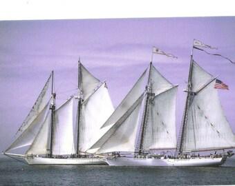 Vintage Postcard of Sailing Ship, Windjammer Racing, Downeast Maine   S131