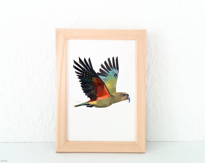 New Zealand bird, Kea art, Mountain parrot, Geometric bird, Green and orange, Kiwiana, Tui, New Zealand art, Flying bird, Parrot print, Kiwi