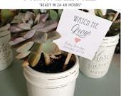 CUSTOMIZABLE tags, 24 hour turnaround - Watch Me Grow tags