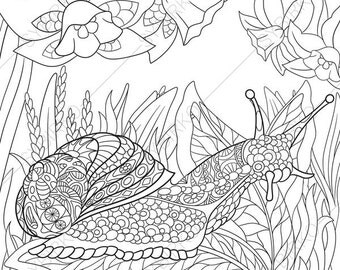 Adult Coloring Pages. Snail. Zentangle Doodle Coloring Book Page for Adults. Digital illustration. Instant Download Print.