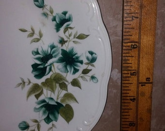 """Walbryzch """"Morning"""" Dinner Plates Made in Poland"""