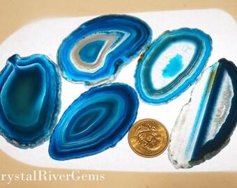 "5 pc Random Lot Teal #0 Brazil Geode Agate Slices Wholesale 2""-3"" L"