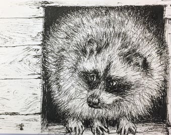 Raccoon - Original Ink Pen Drawing