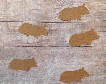 Hamster Confetti