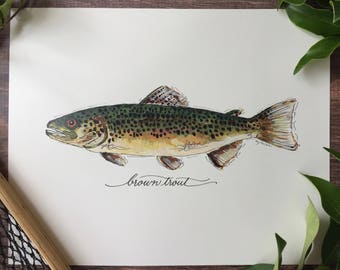 PRINT, Brown Trout, Fly Fishing, Freshwater Fish, Painting, Print , 8x10, 11x14