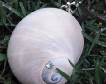 Necklace with naturale shell