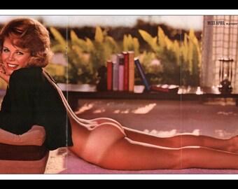 "Mature Playboy April 1965 : Playmate Centerfold Sue Williams Gatefold 3 Page Spread Photo Wall Art Decor 11"" x 23"""
