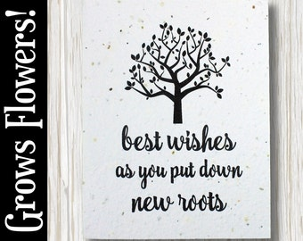 """GROWS WILDFLOWERS! - """"Best wishes as you put down new roots"""" - Plant the Card - 100% recycled - #CN002"""
