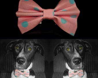 Pinkydotty Dog Bow Tie - Pink