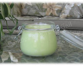 Candles'n More By Gail Citronella Soy Jar Candle