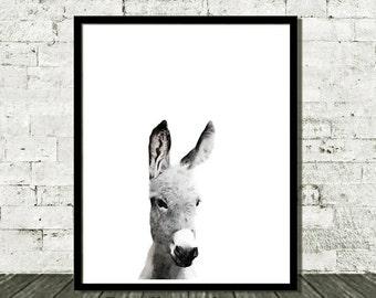 Instant Download, Donkey Print, Nursery Print, Nursery Art, Printable Kids, Kids Wall Art, Animal Nursery, Nursery Printables, Kids Art