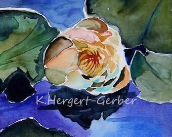 water lilies,4 Aquarellbilder, seerosen, digital, jpg,